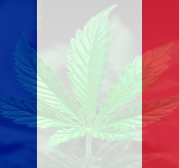 Comment se procurer du CBD en France ?