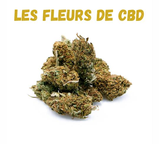 Est-il légal de cultiver du CBD en France ?
